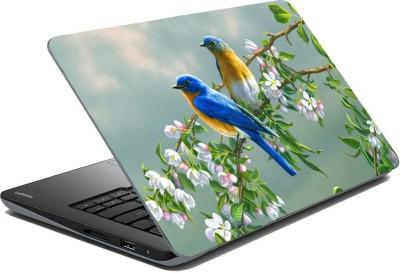 Posterhunt SVPNCA20111 Parrot Laptop Skin Vinyl Laptop Decal