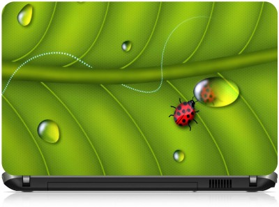 NG Stunners Insect Abstract 1998 Vinyl Laptop Decal 15.6