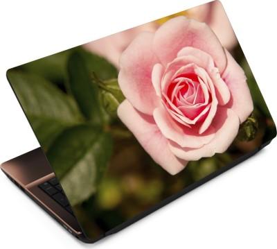 Finest Flower FL51 Vinyl Laptop Decal 15.6