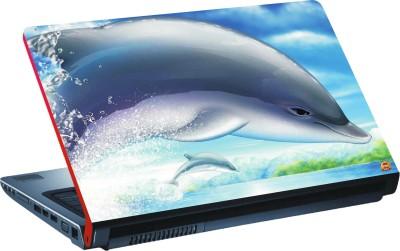 DSPBAZAR DSP BAZAR 10570 Vinyl Laptop Decal 15.6