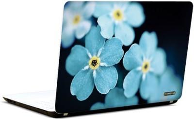 PicsAndYou Bold N Blue Vinyl Laptop Decal 15.6