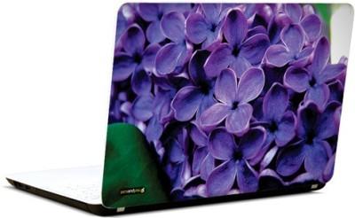 PicsAndYou Rhapsody In Purple Vinyl Laptop Decal 15.6