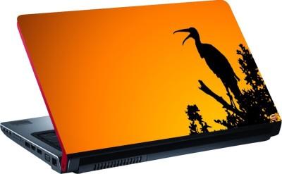 Dspbazar DSP BAZAR 4170 Vinyl Laptop Decal