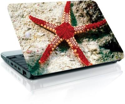 Rockmantra LS 370 Vinyl Laptop Decal 15.6