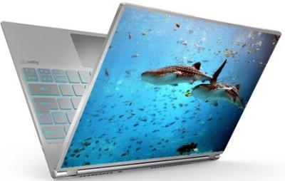 tati ventures woo15 vinyl Laptop Decal 15