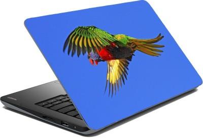 Posterhunt SVPNCA20103 Parrot Laptop Skin Vinyl Laptop Decal