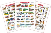 Spectrum Set of 3 Educational Wall Charts (Transport 1, Transport 2 & Birds 2)