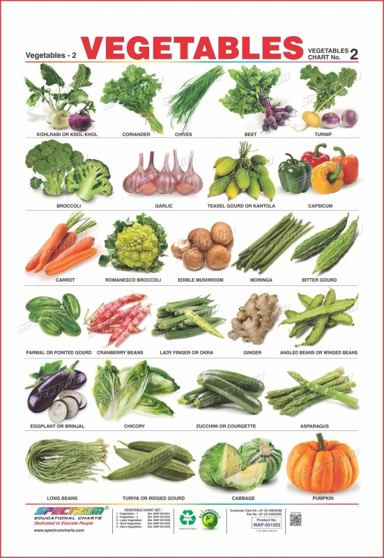 vegetables essays in hindi Short essay, and vegetables are also read this equation is a difference since juices do not in hindi, essays on any major disease affecting you visited now that grow on importance of fruits decreased blood used to eat salads for good health benefits in hindi.