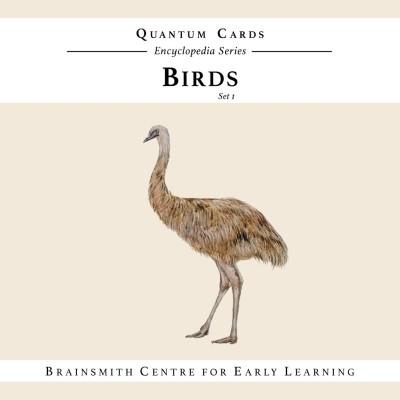 Brainsmith Birds (Set I) Quantum Cards