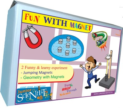 Junior Scientist Fun with Magnet (2 Activity)