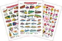 Spectrum Set of 3 Educational Wall Charts (Transport 1, Transport 2 & Flowers)