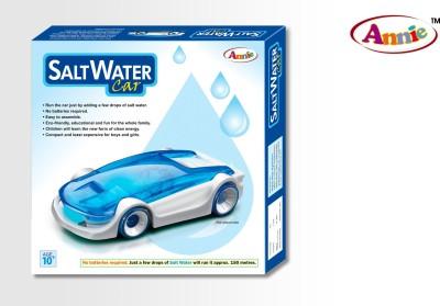 Annie Salt Water Car