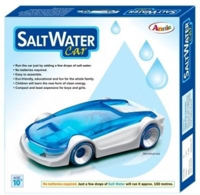 Annie Annie Salt Water Fuel Cell Car