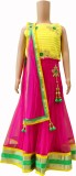 Ami Embroidered Women's Ghagra, Choli, D...