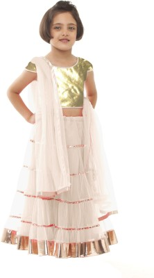 Pakiza Design Self Design Girl's Lehenga, Choli and Dupatta Set
