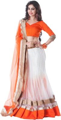 Aarna's Collection Embellished Women's Lehenga Choli