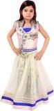 Tiny Toon Girls Lehenga Choli Embroidere...