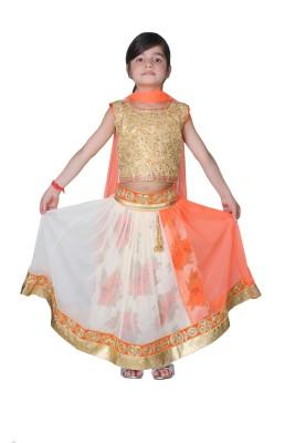 Tiny Toon Embroidered Girl's Lehenga, Choli and Dupatta Set