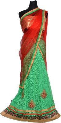 DSK Embroidered Women's Lehenga Choli