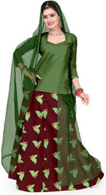 Admyrin Printed Women's Lehenga Choli