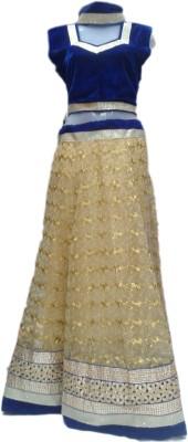 rc Self Design Women's Lehenga Choli