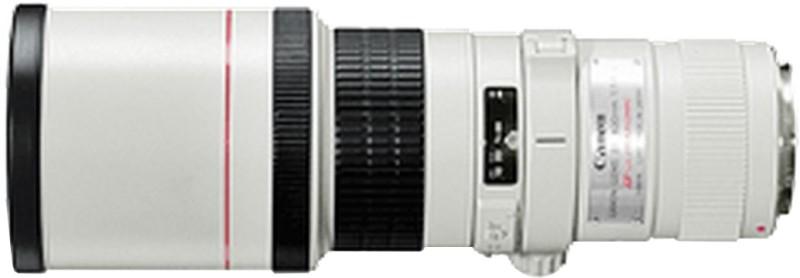 Canon EF 400 mm f/5.6L USM  Lens