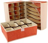 BlushBees Lingerie Storage Case (Bra and...