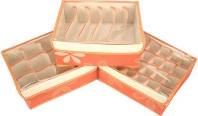 Home Belle Lingerie Storage Case