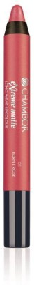 Chambor Extreme Matte Long Wear Lip Color(Burnt Rose 01)