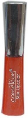 Cameleon Star Lip Gloss 5 ml
