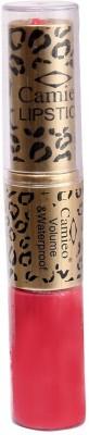 CAMIEO Lipstick & Lipgloss Longlasting & Waterproof, 2 in 1 13 g