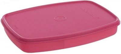 Signoraware Slim lunch box 1 Containers Lunch Box