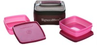 Signoraware Hot 'n' Fresh 2 Containers Lunch Box(700 ml)