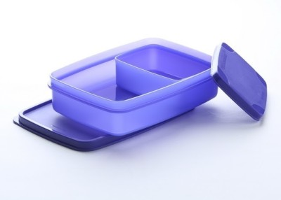 Signoraware Compact Lunch Box Small - Violet 2 Containers Lunch Box