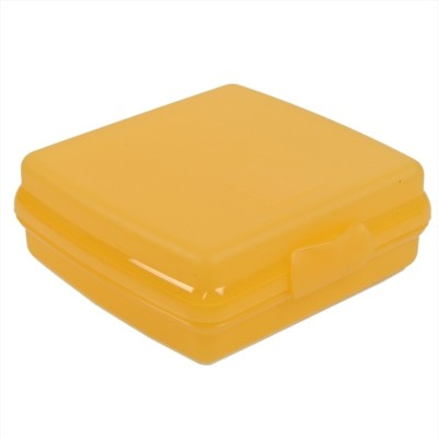 Tupperware Sandwich Keeper 1 Containers Lunch Box(300 ml)