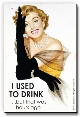 bCreative I Used To Drink But That Was Hours Ago Fridge Magnet, Door Magnet