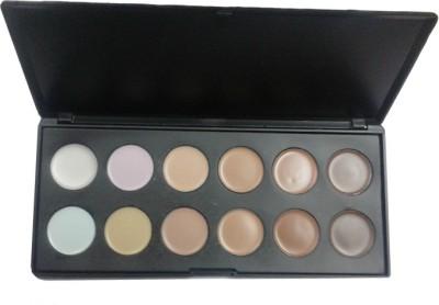Mib 12 Colour Concealer Palette Kit