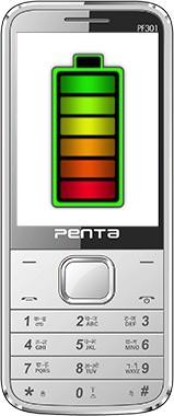BSNL Penta Bharat Phone(Silver)