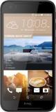 HTC Desire 830 (Black Gold, 32 GB) (3 GB...