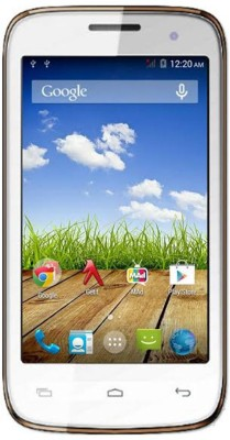 Spice Xlife (White and Champagne, 8 GB)