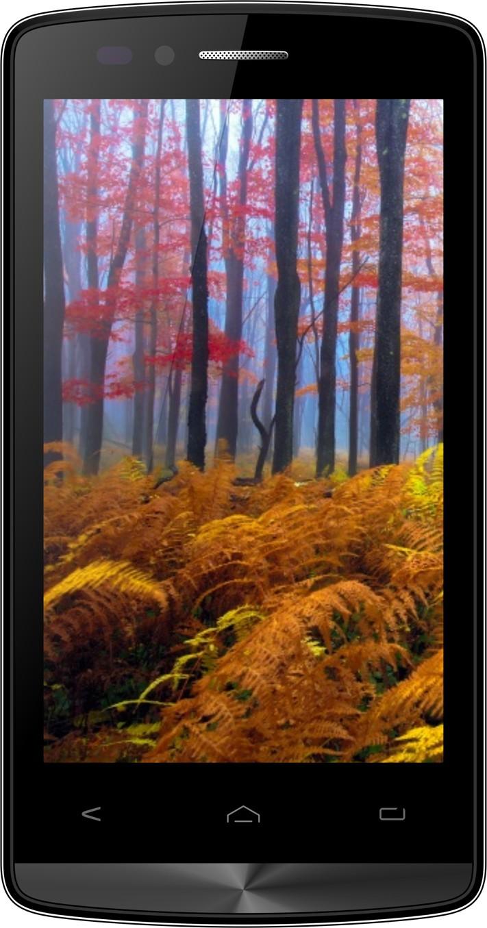 Wham Q4 (Red, 8 GB)(1 GB RAM)