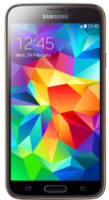 SAMSUNG Galaxy S5 Single Sim - Grey (Grey, 16 GB)