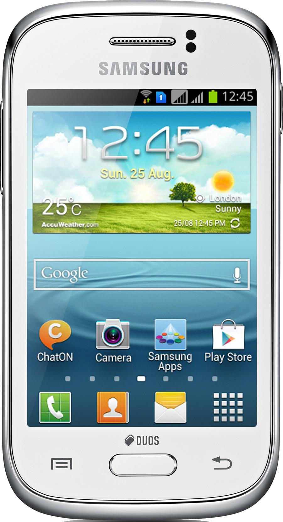 Samsung Galaxy Young S6312 (768MB RAM, 4GB)