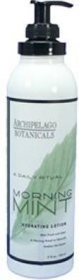 Archipelago Botanicals Morning Mint Hydrating Lotion lotion