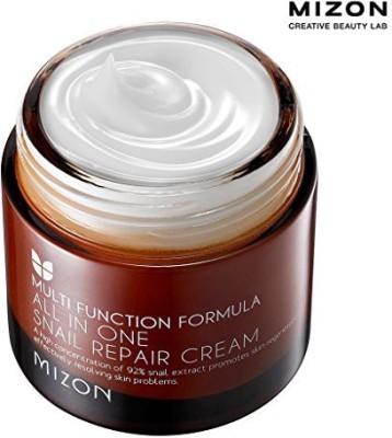 MIZON [] All in One Snail Repair Cream ()