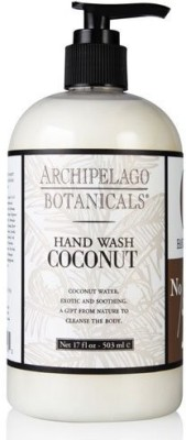 Archipelago Botanicals Archipelago Coconut Hand Wash for Body /17