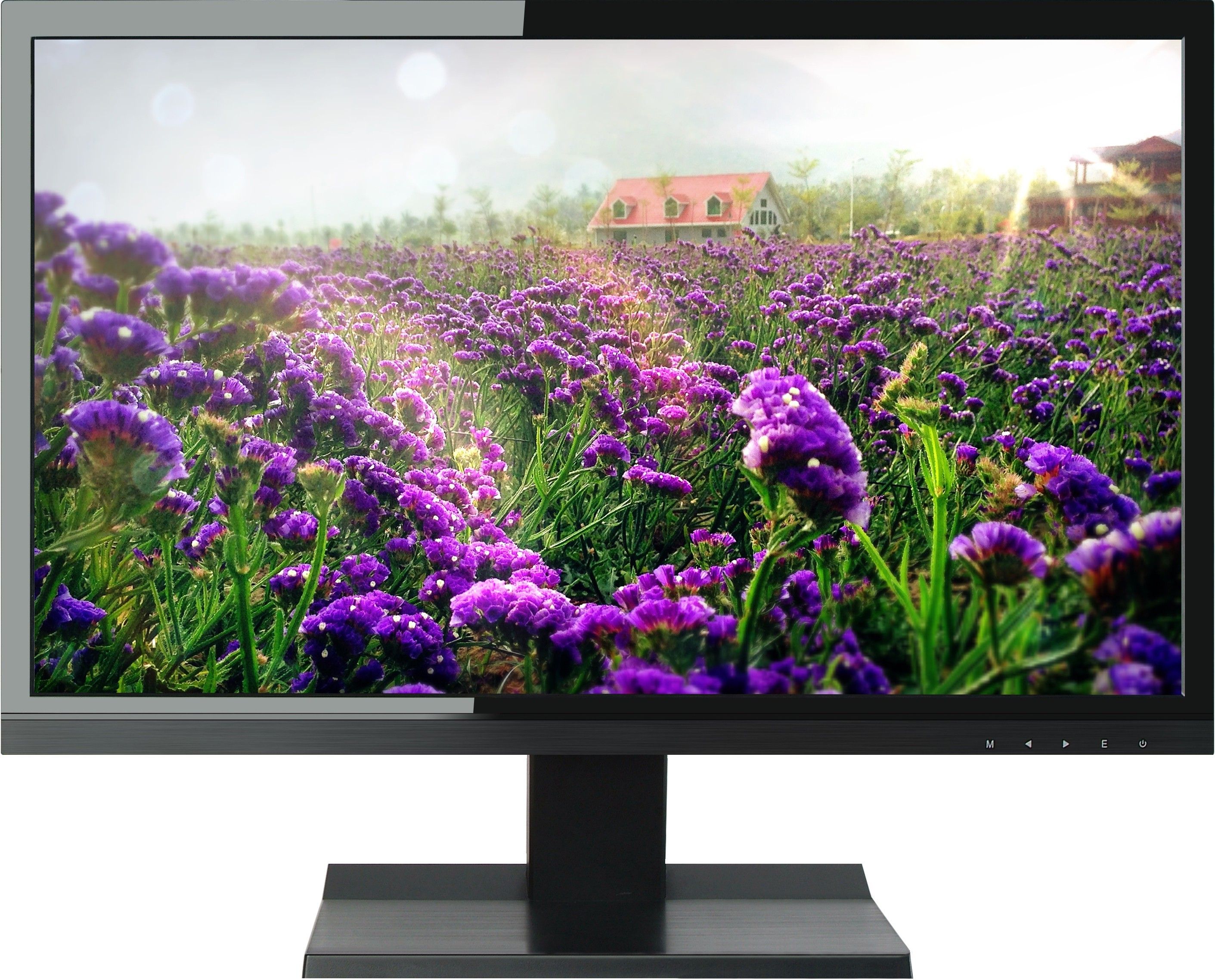 Deals | Great Deals Dell, Micromax, Samsung, BenQ...