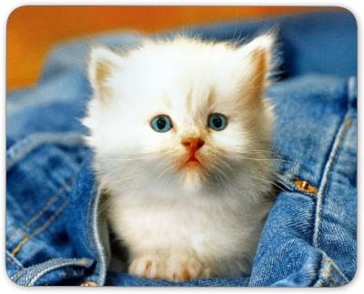 Digiclan Digiclan White cat in Denims Mouse Pad-SZMP100 Mousepad