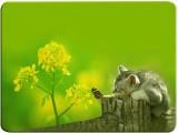Desicase Cute Cat Square Mousepad (Multi...