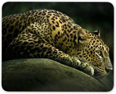 Digiclan Digiclan Multicolor Leopard Mouse Pad-SZMP035 Mousepad